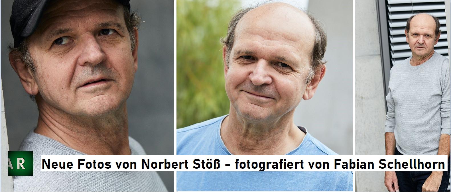 norbert paint final